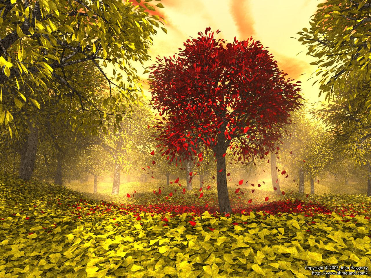 Autumn | Rosanne Bittner Autumn