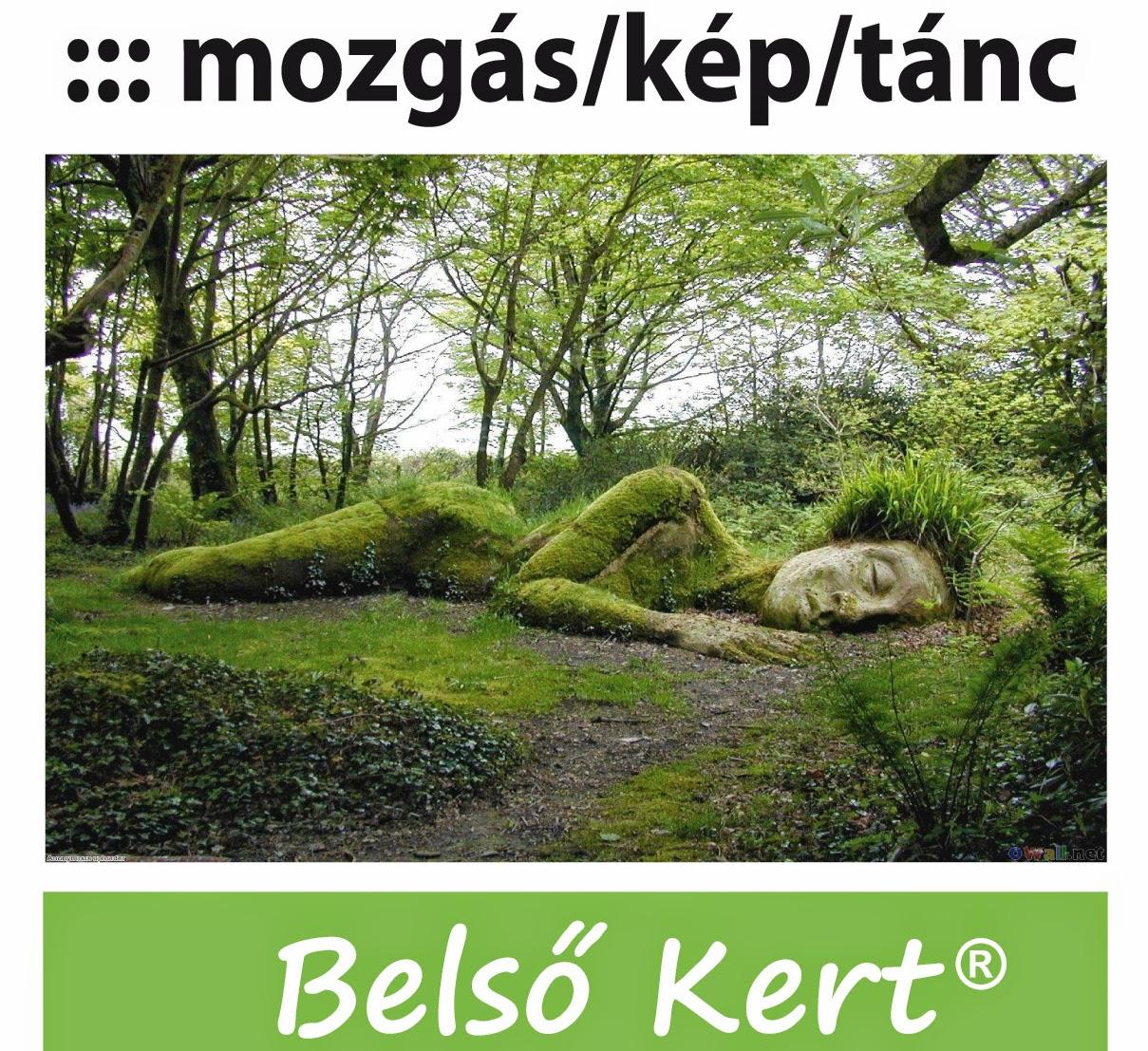 http://www.tancter.hu/2014/08/belso-kert-integralt-kifejezes-es.html