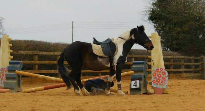 Falling off a little pony