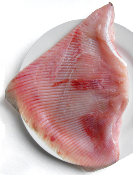 Flavors of brazil fish of brazil ray or skate arraia for Wings fish