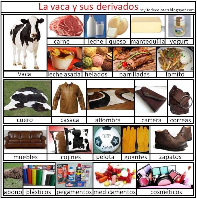 los derivados de la vaca imagenes
