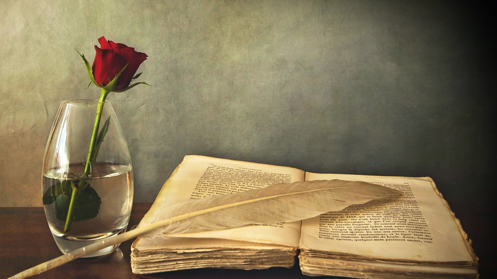 Beautiful Book Rose Wallpaper