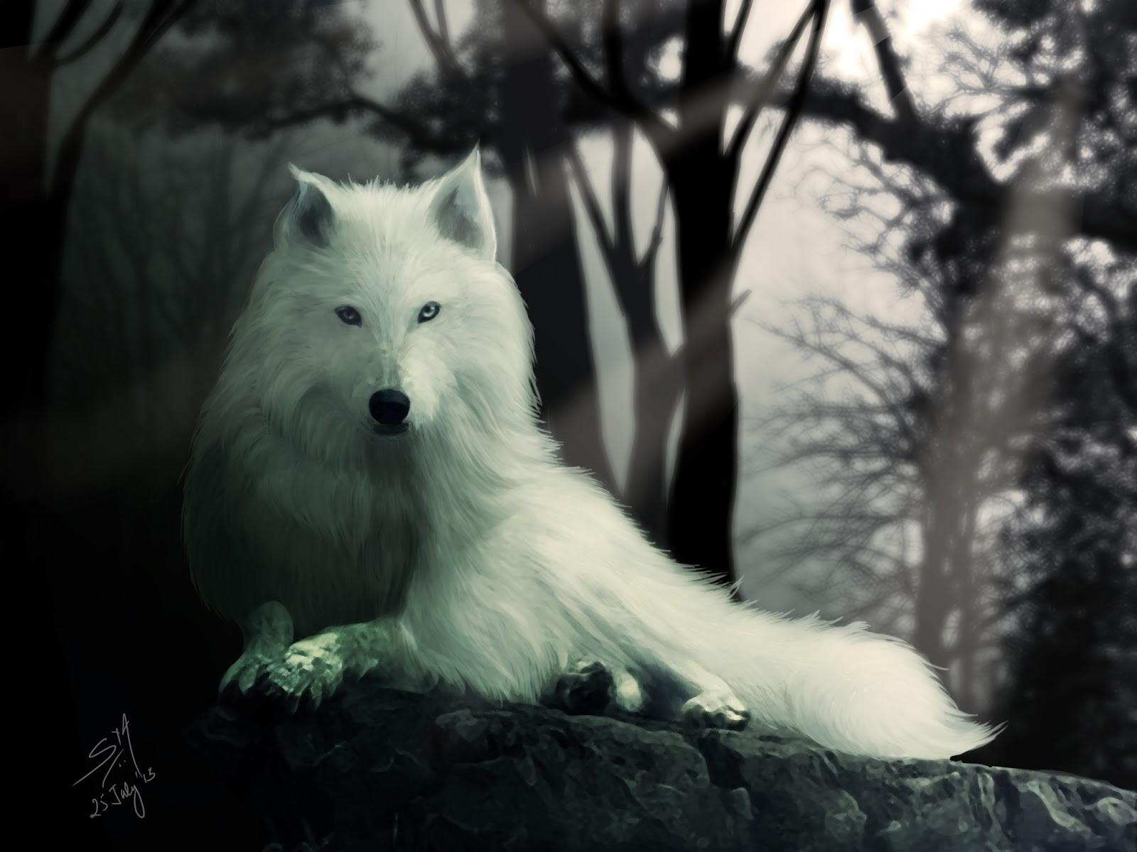 [Image: Ghost.jpg]