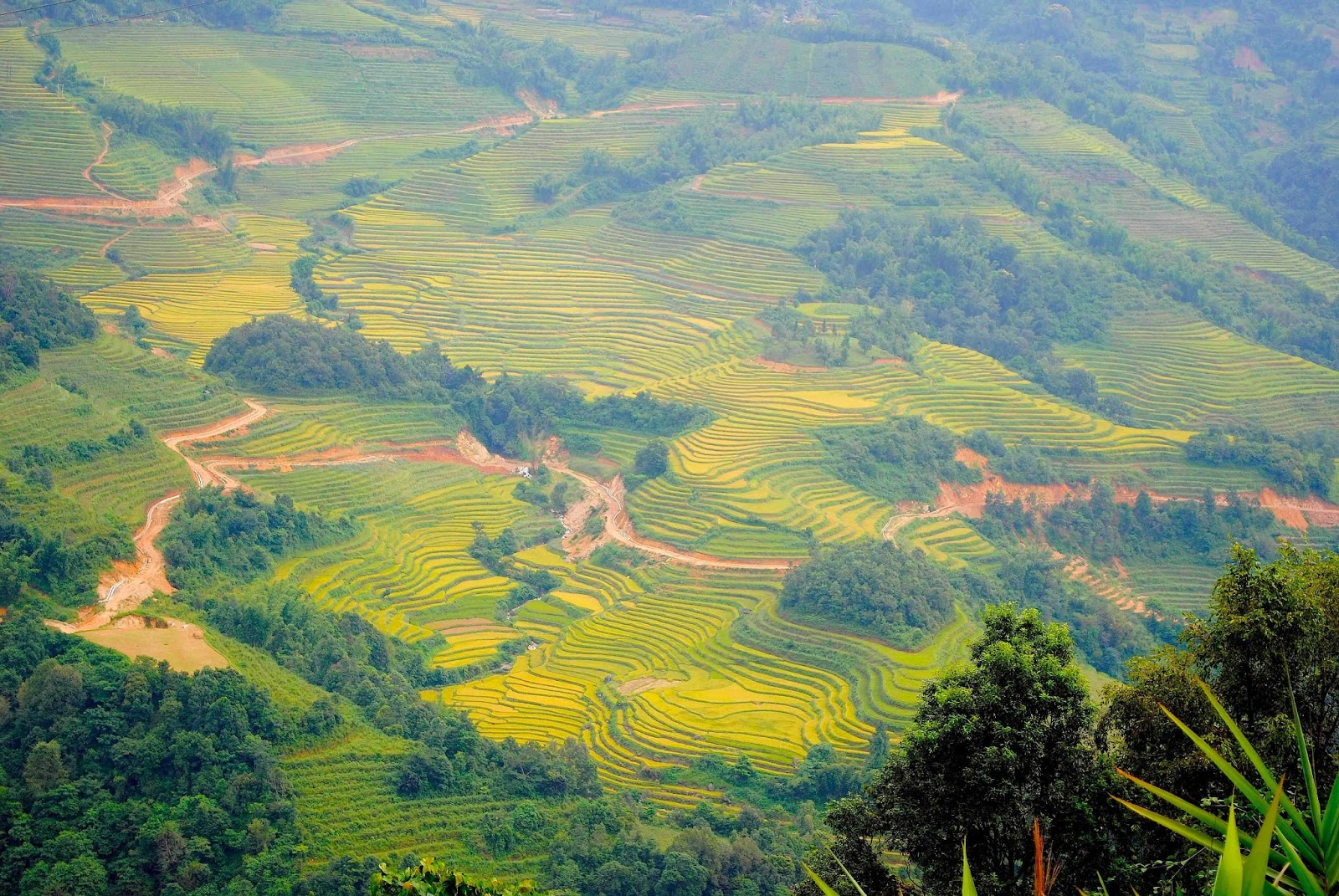 assessing the agritourism potential for rural tourism essay Agritourism is promoted by most of the countries in the world aiming at sustainable rural development since sri lanka is an agricultural country, it is the time to analyze the potential.