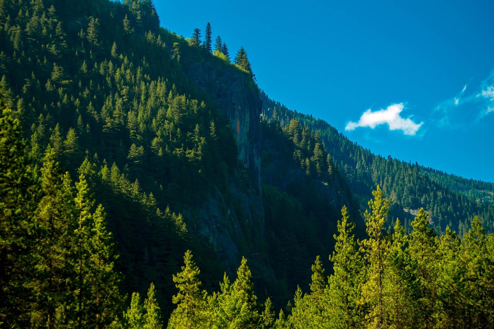 С парковки видно невысокую гору, лесистая тропинка которой выведет нас к озеру.