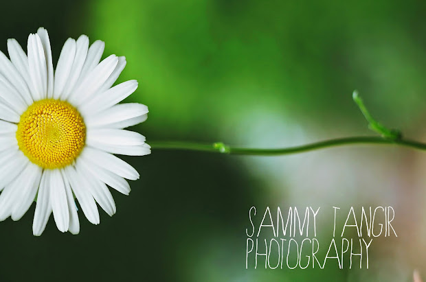 Sammy T. Photography