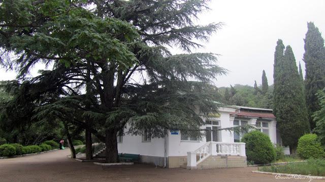 Столовая. Форосский парк