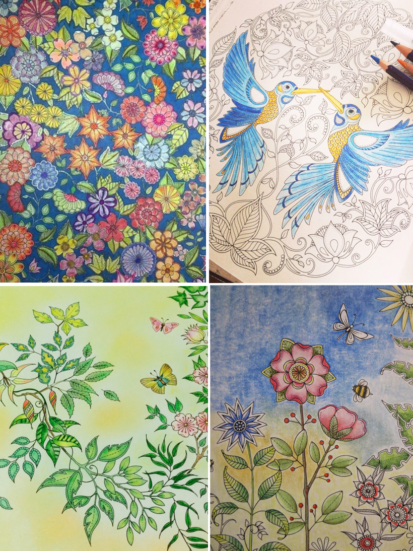 Pictures Borrowed From Johanna Basfords Colouring Gallery By Users Passion For Pencils