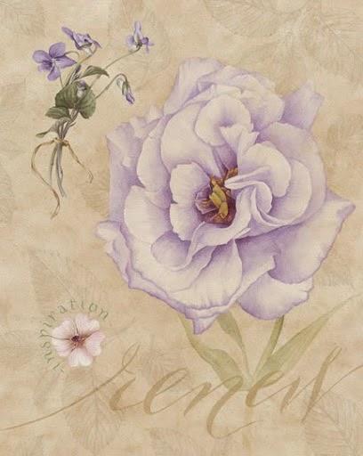Lamina con magnolia