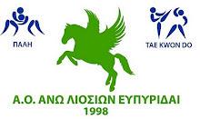 Ο Αγιος Γεώργιος Σερρών και ο Ευπυριδαι Αν. Λιοσίων πρωταθλητές Ελλάδας