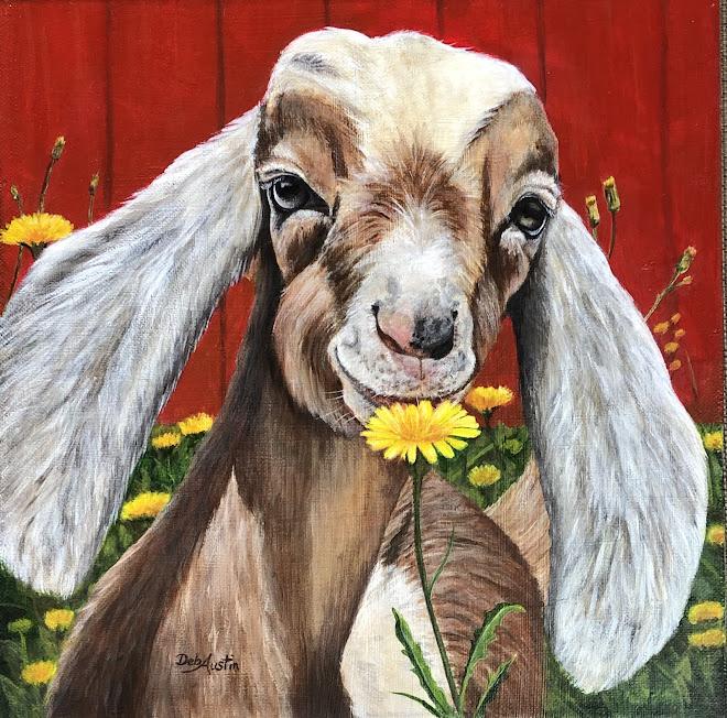 "Nubian Goat in Dandelions (Acrylic 12""sq.)"