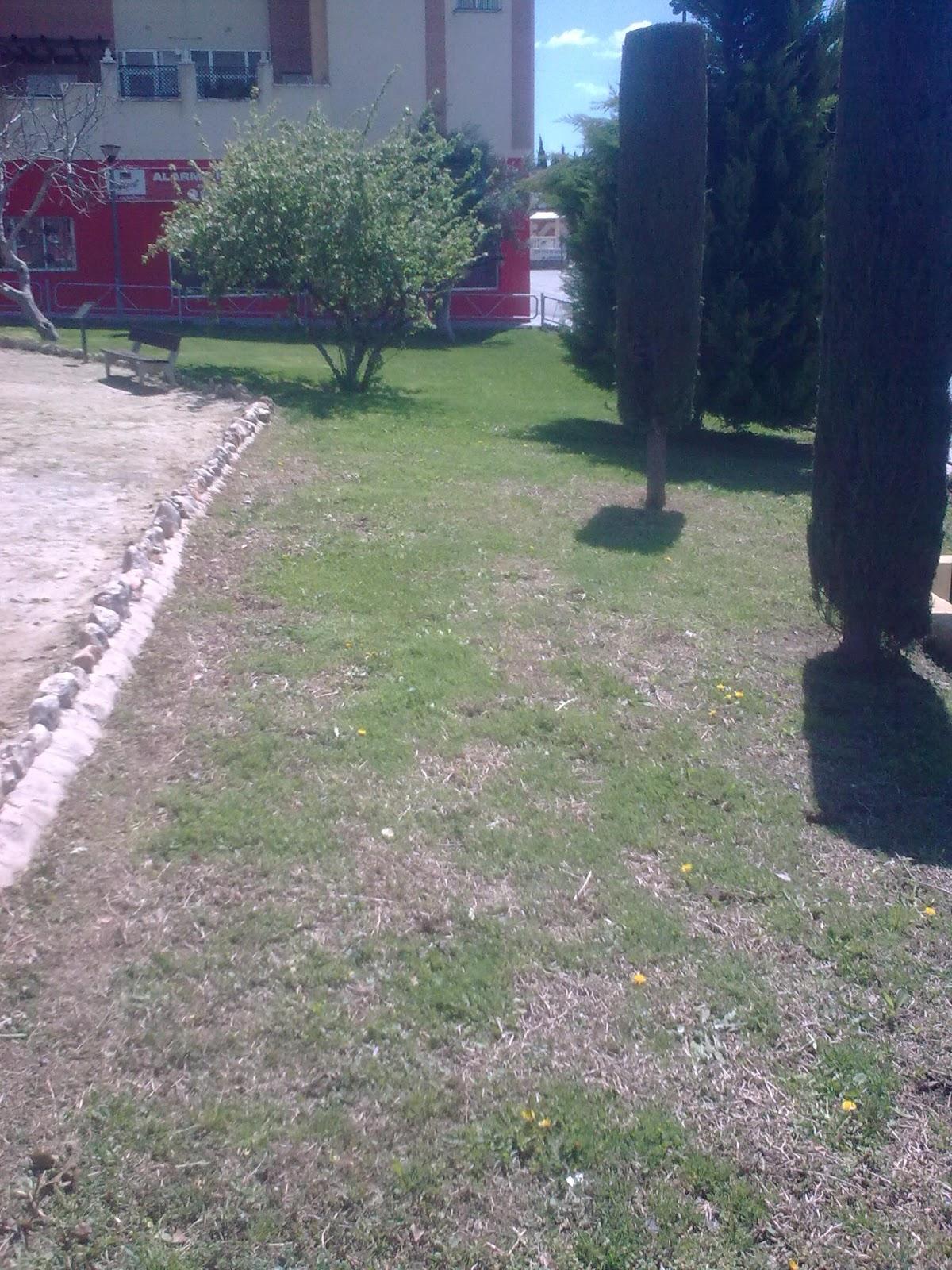Parques y jardines de ogijares mantenimiento parques for Mantenimiento de parques y jardines
