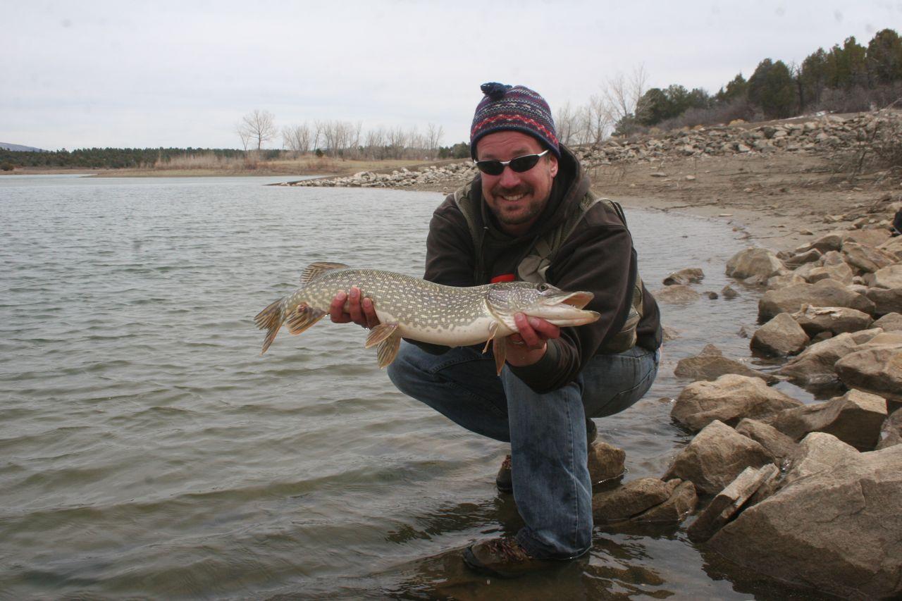 Durango southwest colorado fishing puett pike for Pike fishing colorado