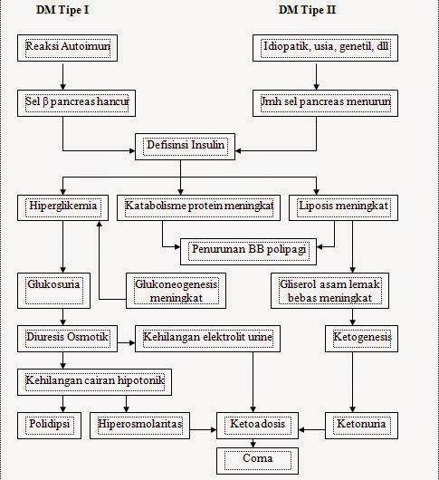 Mengapa Pankreas Tidak Dapat Menghasilkan Insulin