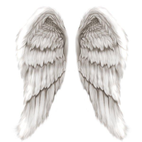 Angel Wings Drawings