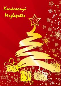 Karácsonyi meglepetésem