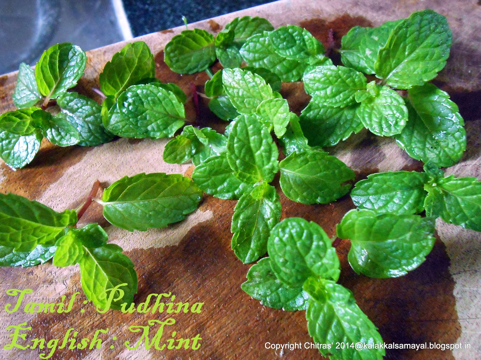 Pudina ilai [ Mint leaves ]