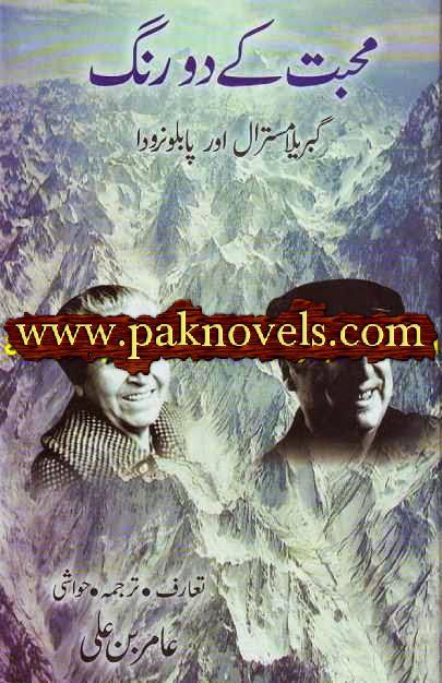 Mohabbat Ke Do Rang By Amir Bin Ali