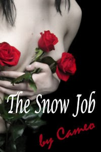 http://www.amazon.com/The-Snow-Job-Cameo-ebook/dp/B00BFNDTZO/ref=sr_1_1?ie=UTF8&qid=1383189017&sr=8-1&keywords=the+snow+job+by+cameo