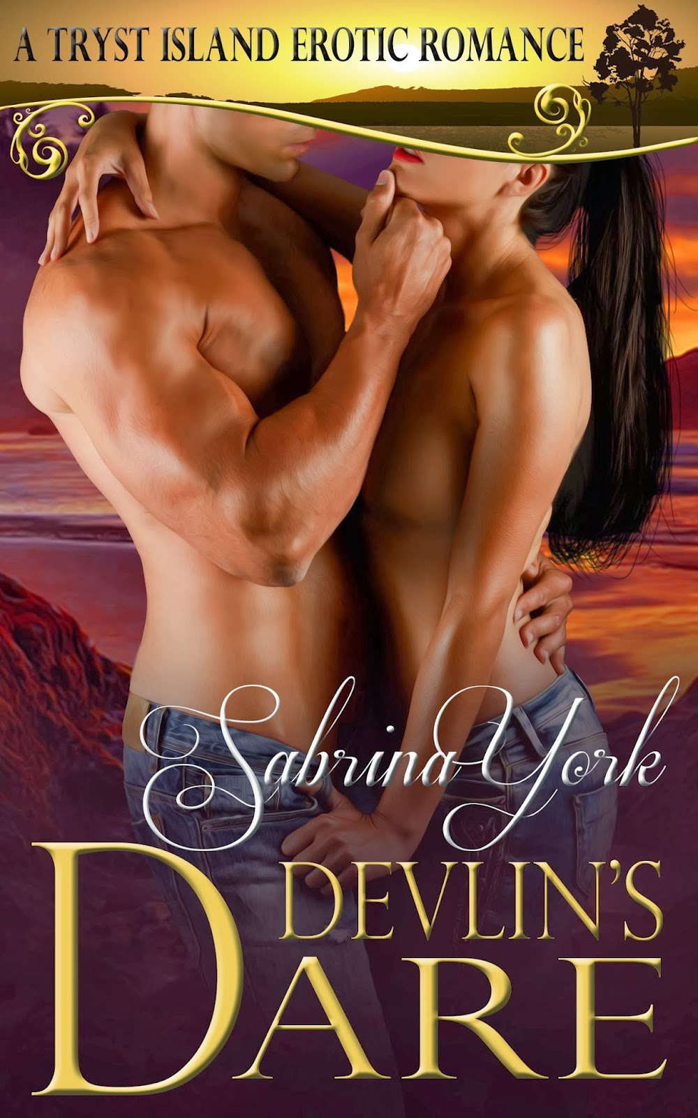 Devlin's Dare by Sabrina York