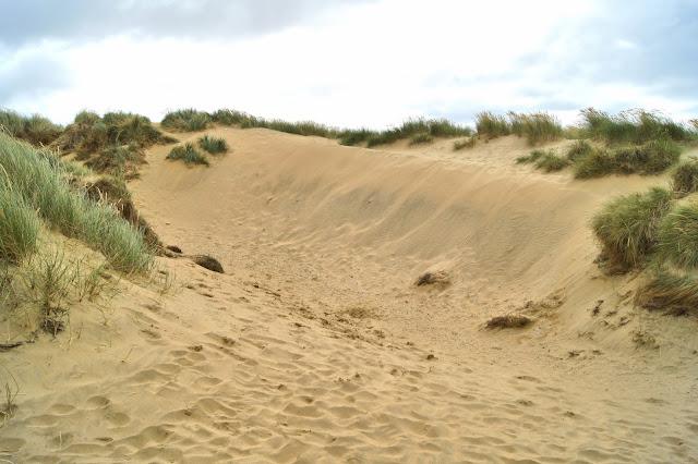 sand-dune-beach