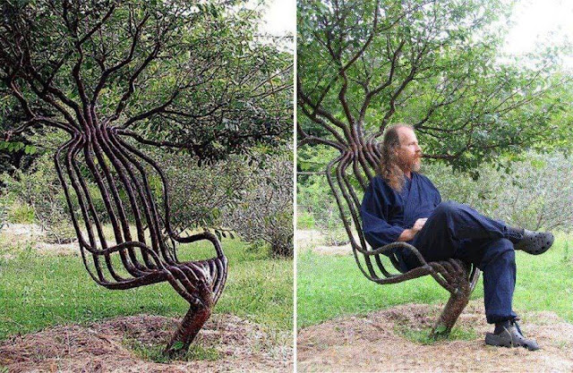 living garden chair using tree shaping methods