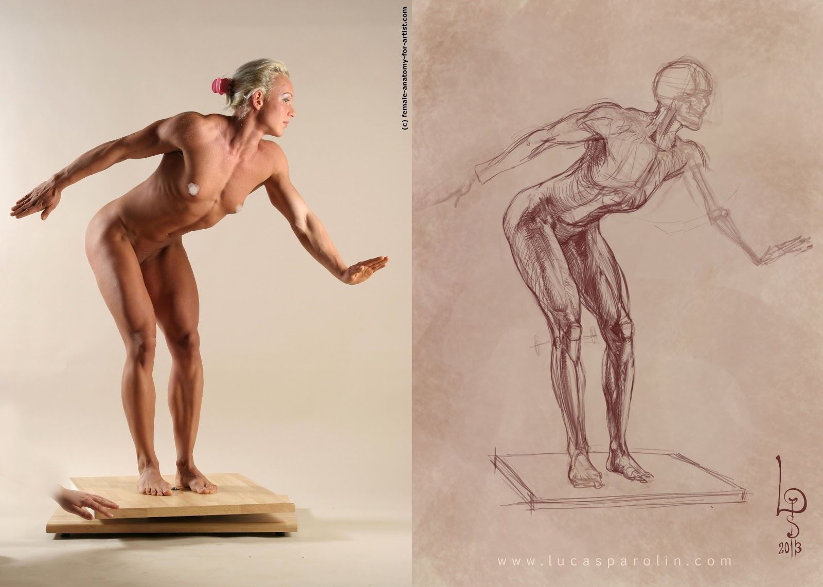 Lucas Parolin - concept art and studies: Anatomy from photos