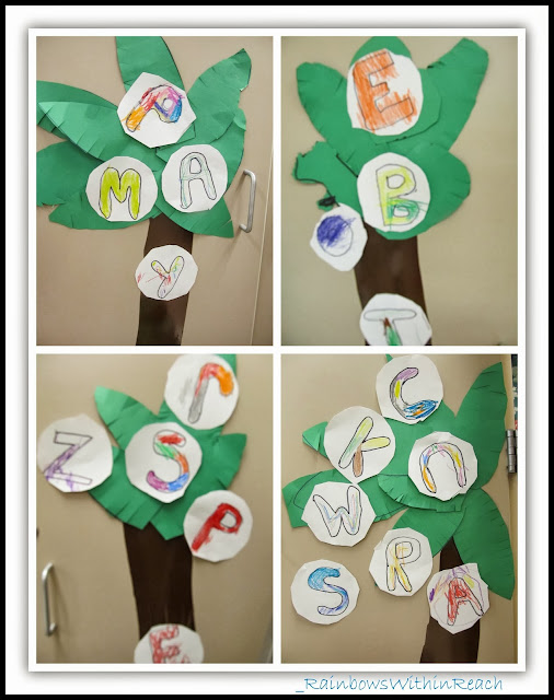 Chicka Chicka Palms and Letters in the Classroom via RainbowsWithinReach