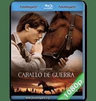CABALLO DE GUERRA (2011) FULL 1080P HD MKV ESPAÑOL LATINO