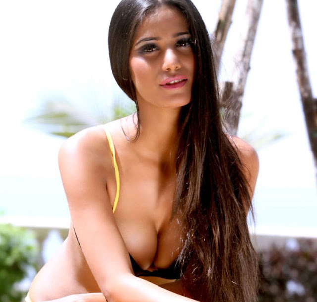 Hot Sexy Poonam Pandey's maiden movie announced!