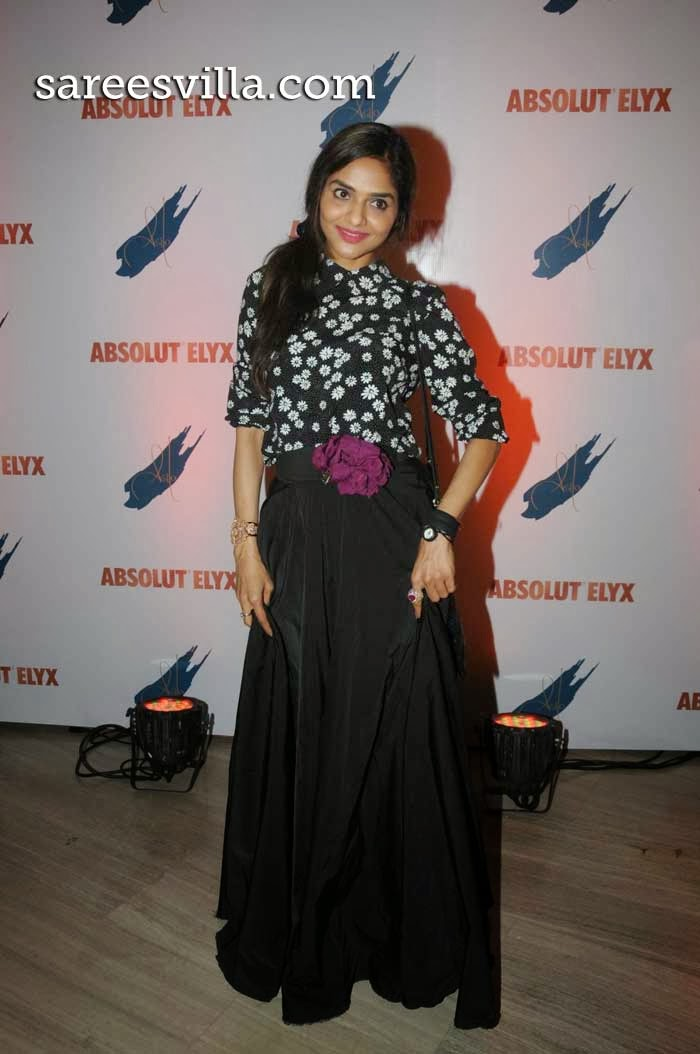 Madhoo At Absolut Elyx party