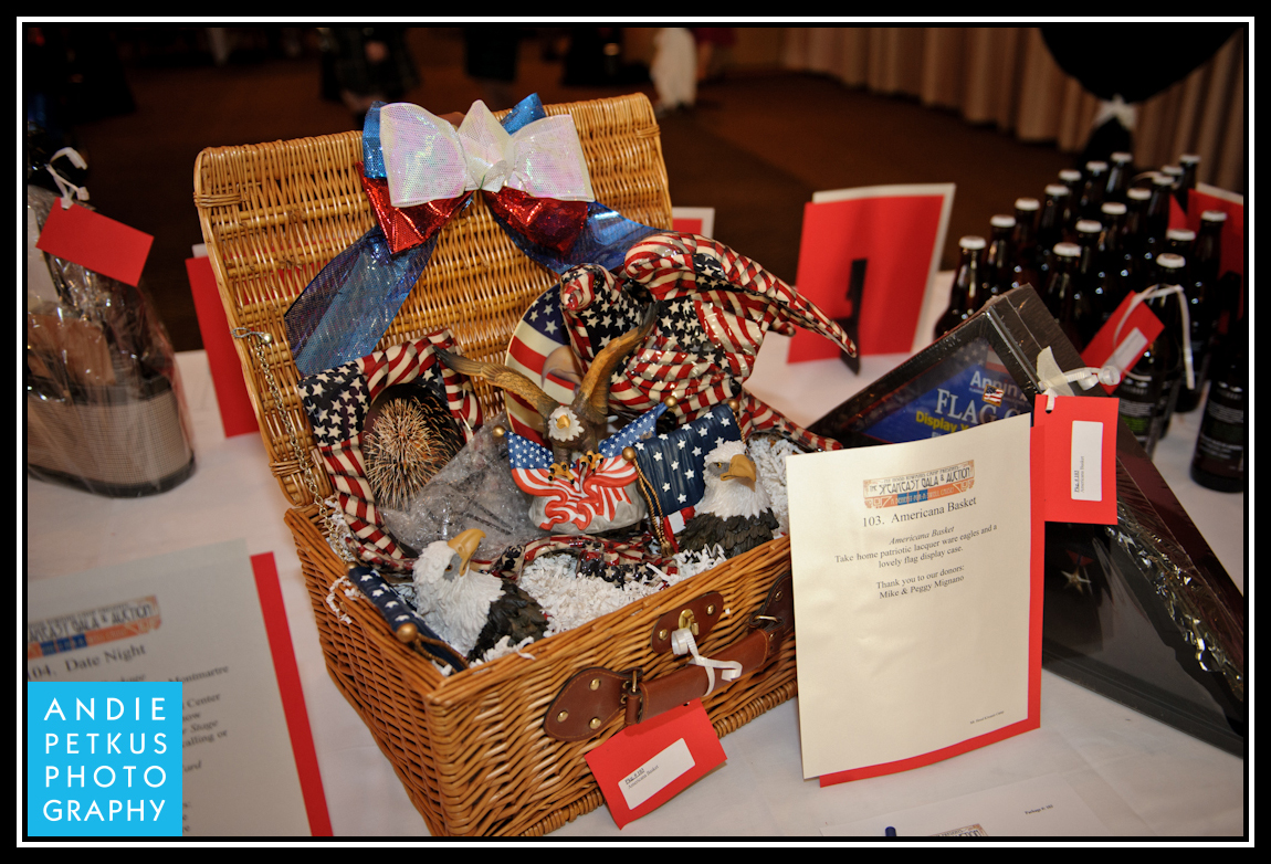 Themed basket ideas for auction http samanthaswaimfundraising