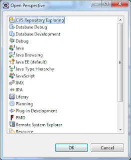 Choosing CVS Repository Exploring from perspective