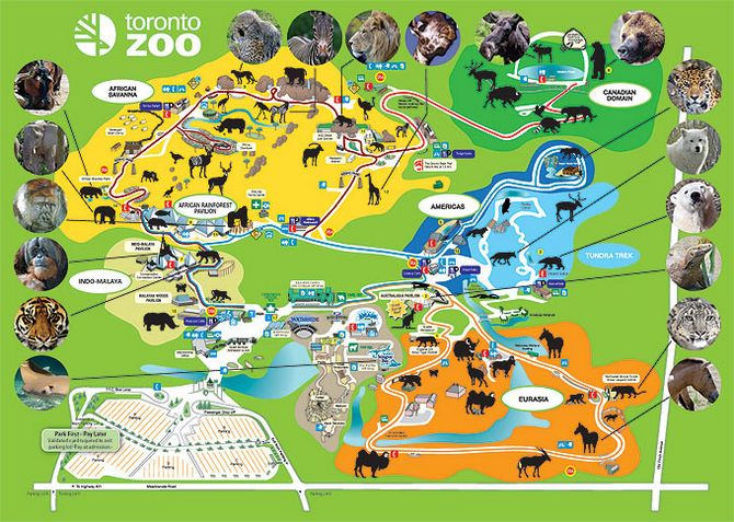 Amazing World: The Coolest Zoos From Around the World