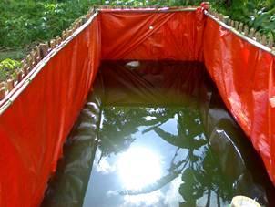 Kolam ukuran 2 x 5 x 1,5 meter