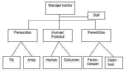 contoh struktur organisasi lini dan staff