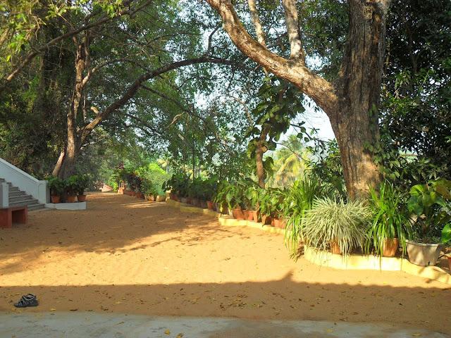 парк Нараяны