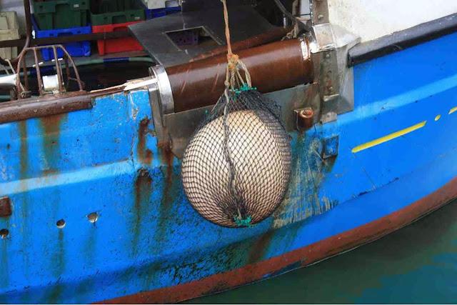 Dieses Fischerboot hat schon einiges erlebt