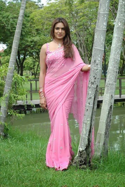 Aditi Agarwal In Pink Saree