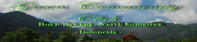 Exciting Bukit Lawang Adventure   l  Green Community Club