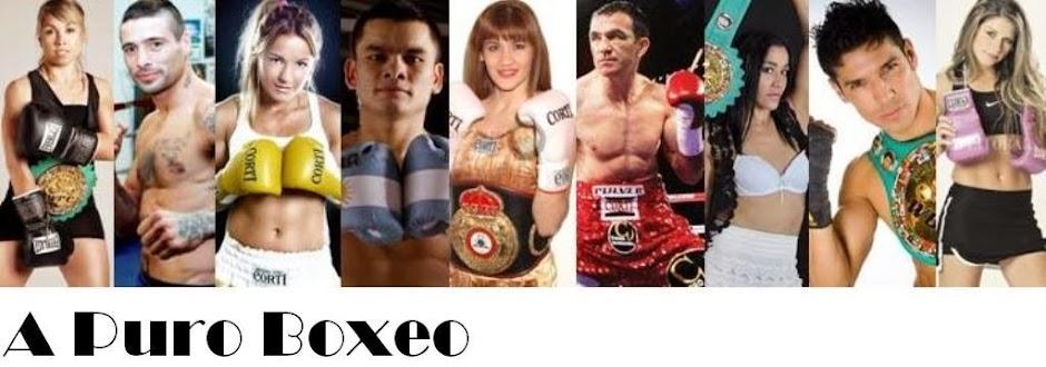 A Puro Boxeo