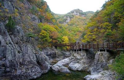 Tempat Wisata di Korea yang Populer dan Menarik