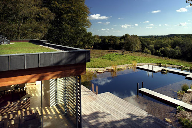Grass on terrace UK