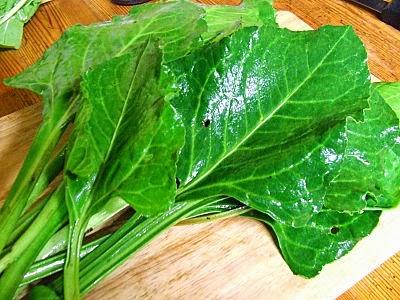 Sea beet leaves
