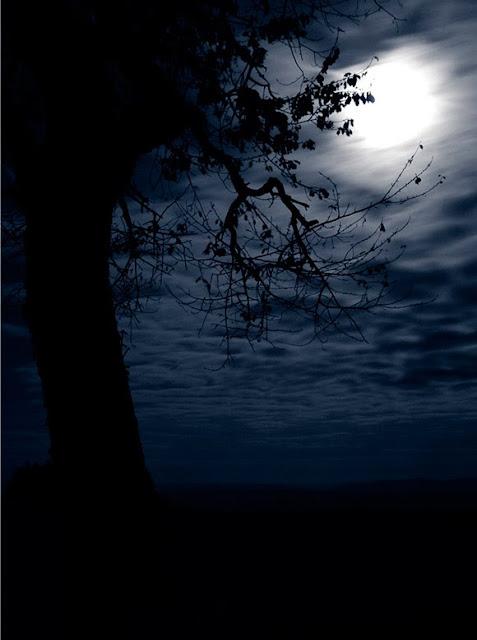 صور جزر القمر , القمر صور