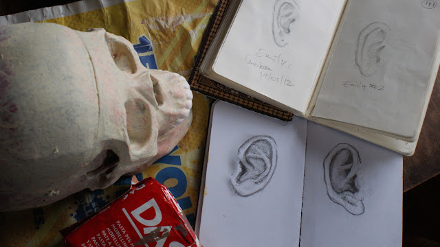 Ears are selected for the skull.