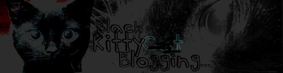 Black Cat Blogging | There's More To Life Than Cats!