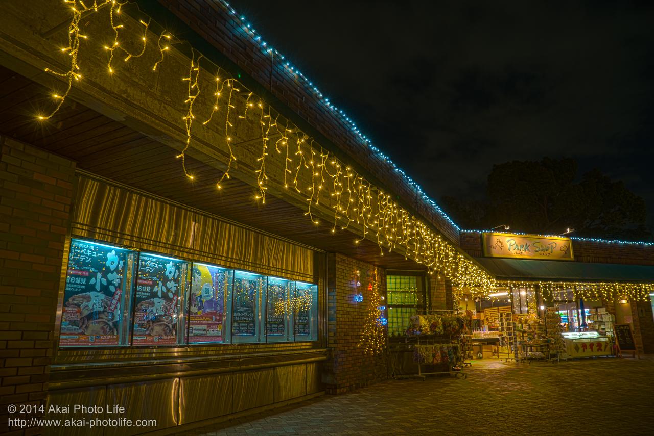 国営昭和記念公園のイルミネーション(Park Shop 立川口売店)