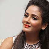 Parul Yadav Photos at South Scope Calendar 2014 Launch Photos 252876%2529