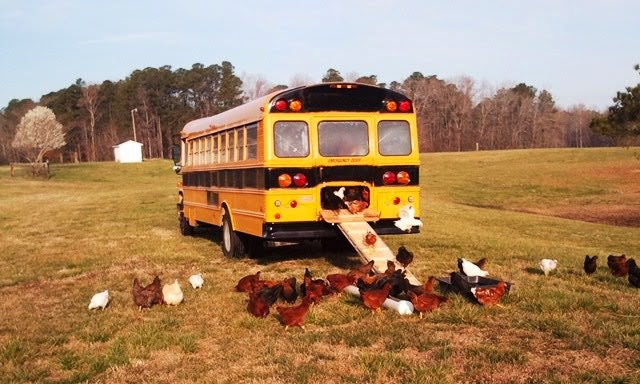 cool coops the cluck bus community chickens rh communitychickens com cool house buses cool house music albums
